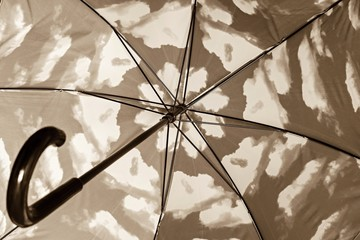 sepia umbrella cane fragment from within closeup