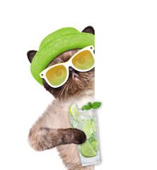 Cat with lemonade for white banner.