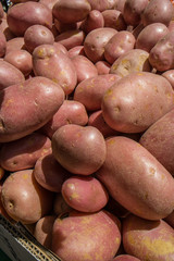 Red potatoes in the market