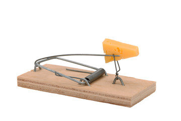 .mousetrap with cheese