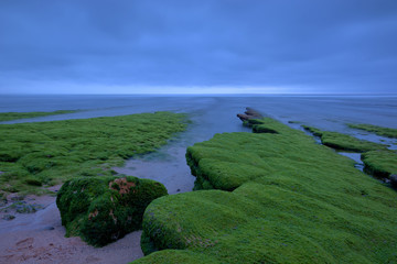green mantle Beach magoito, Sintra, Portugal