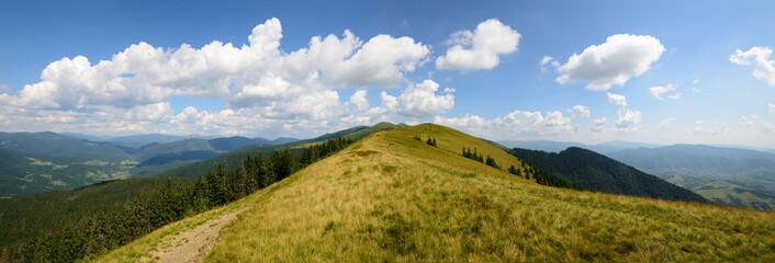 Panoramic day grassy mountains