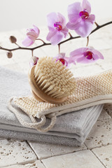 brush, loofah and towel for hydration and purity