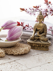 spa treatment with zen recovery