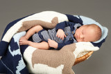 Newborn infant baby sleeping in a basket