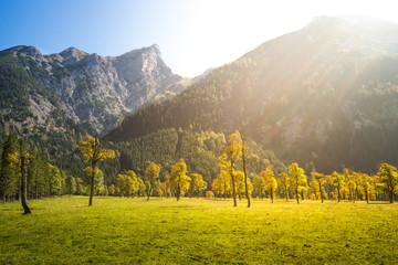 Großer Ahornboden, Alpen