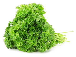 bunch of parsley isolated on a white background