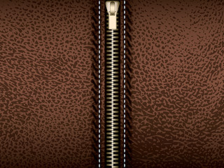 Brown leather with zipper vector part of clothes
