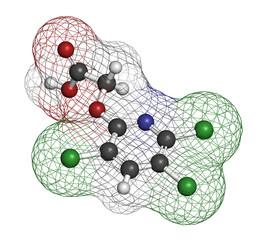 Triclopyr herbicide (broadleaf weed killer) molecule.