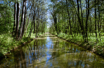river canal