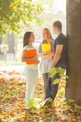Three cheerful college students standing in a park talking