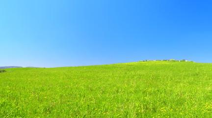 Bella collina verde con cielo azzurro.