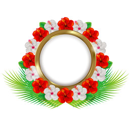 Frame of the hibiscus. Illustration. / Tropical images.