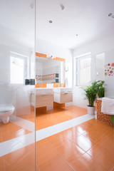 View of colorful bathroom