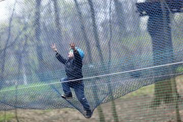 Child climbing into a net