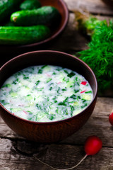 okroshka, traditional Russian cold soup