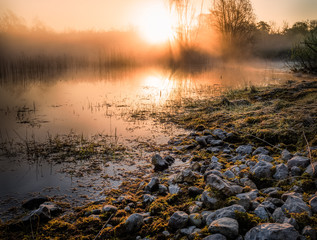 Stones by water of a swamp, the sun rising in the background