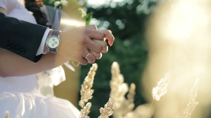 Wedding rings bride and groom hands close-up romance nature
