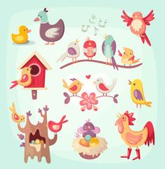 Colorful spring birds singing, nesting and raising nestlings