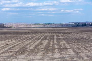 Empty not plowed field after winter