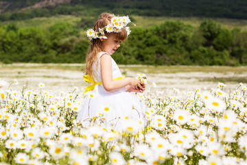 Cute child girl at field of camomiles