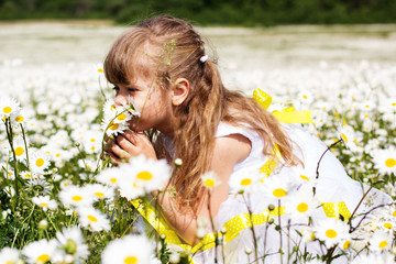 Pretty child girl at camomile field