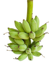 Bunch of green bananas isolated on white background