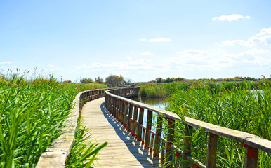 National Park Tablas de Daimiel, Spain