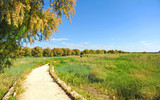 visit the Tablas de Daimiel National Park, Spain