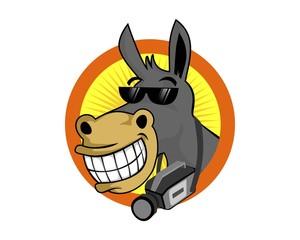 Donkey Movies