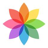 Fototapety Pastel Rainbow Flower
