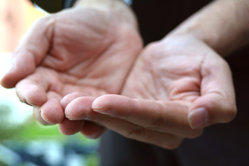 Mani che raccolgono