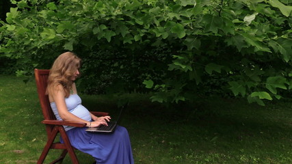 pregnant girl work with laptop sit in chair near tulip tree.