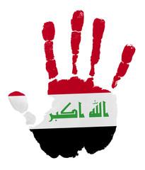 iraq flag palm print