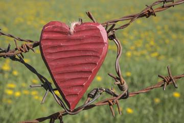fatal love