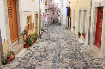 Lisbon flower street