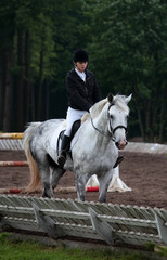 Dressage test: woman trotting her horse