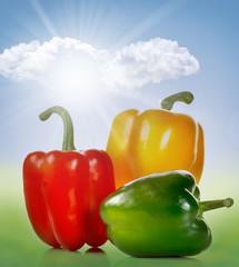 Peperoni colorati