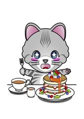 パンケーキに喜ぶ猫