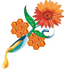 honey drop flows down from spoon with flower