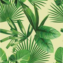 tropische palm verlaat naadloze achtergrond
