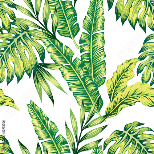 Fototapeta tropical plants seamless background