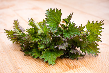 young nettle  on the wooden table
