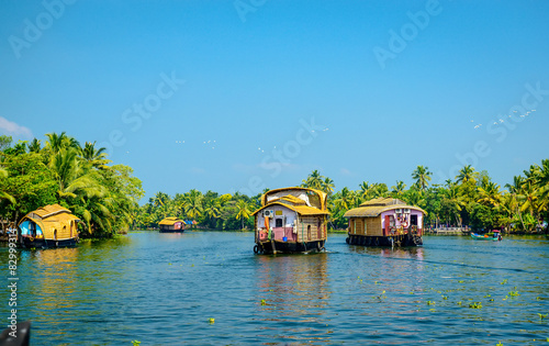 Foto Murales Houseboats in the backwaters of Kerala, India