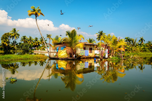 Foto Murales Traditional local house in backwaters of Kerala