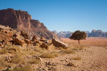 Wadi Rum – Jordan desert