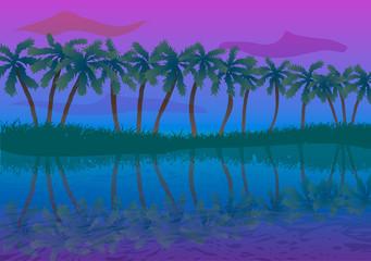 Palm trees near the coast at sunset.