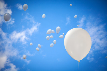 White Balloons on Sky Background