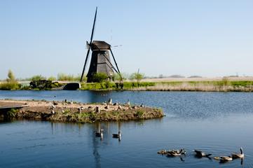 Windmill - Kinderdijk