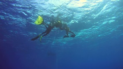 Freedivers resting on the buoy, Red Sea, Egypt